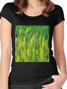 Morning Grass 7 Women's Fitted Scoop T-Shirt