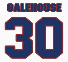 National baseball player Denny Galehouse jersey 30 by imsport