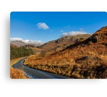 Duddon Valley Road Canvas Print