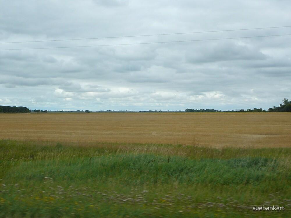 Prairies 2 by suebankert