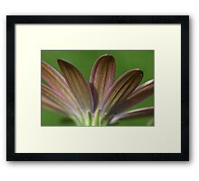 Pink on green Framed Print