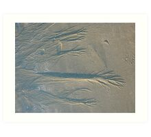 Markings in the Sand Art Print