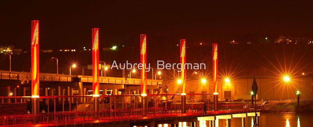 The pier.  by Aubrey  Bergman