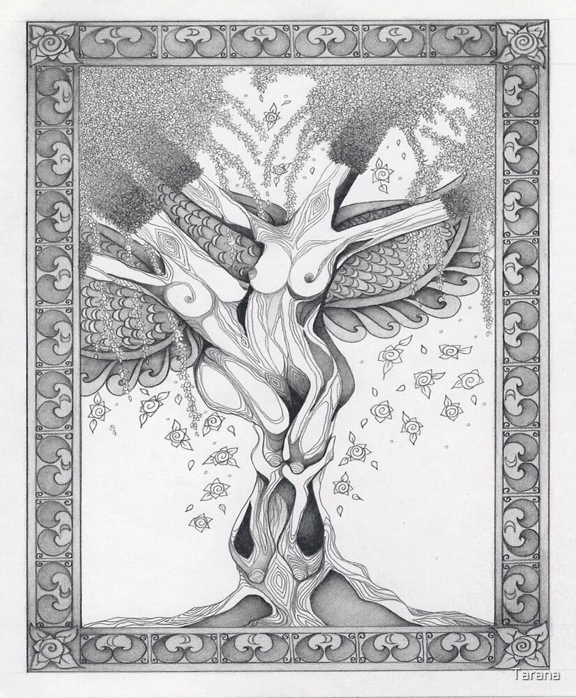 The Tree of Feminity... by Tarana