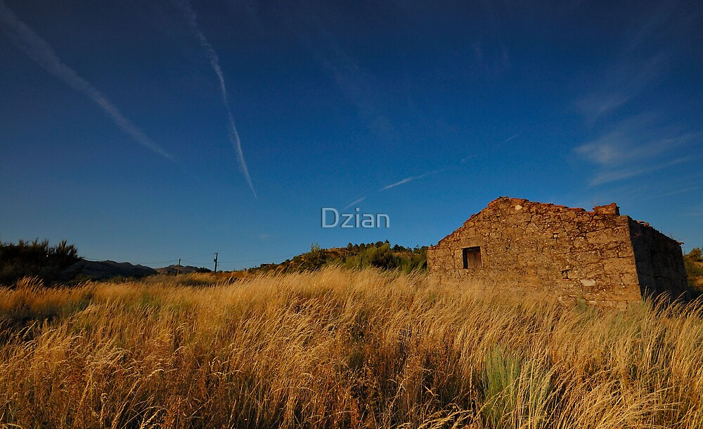 A Home in the Prairie by Dzian