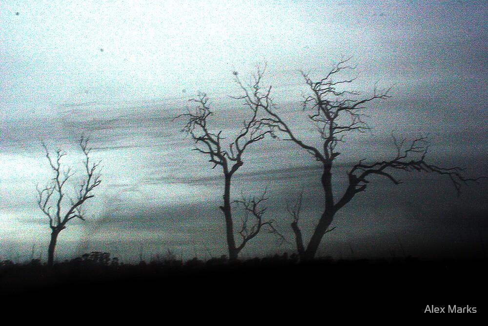 the darkest places by Alex Marks
