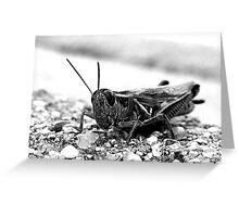 Hopper. Greeting Card