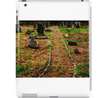 The Pathway iPad Case/Skin