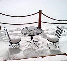 Snow Sitting by diongillard