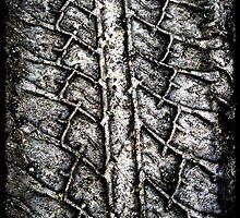 tyre  by teganmorley