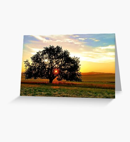 """Sundown at Ceres"" Greeting Card"