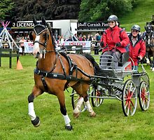 Lowther Horse Driving Trials by Gary Kenyon
