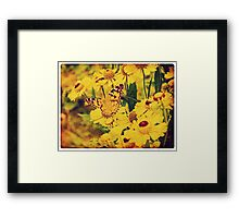 Grunge butterfly background 5 Framed Print