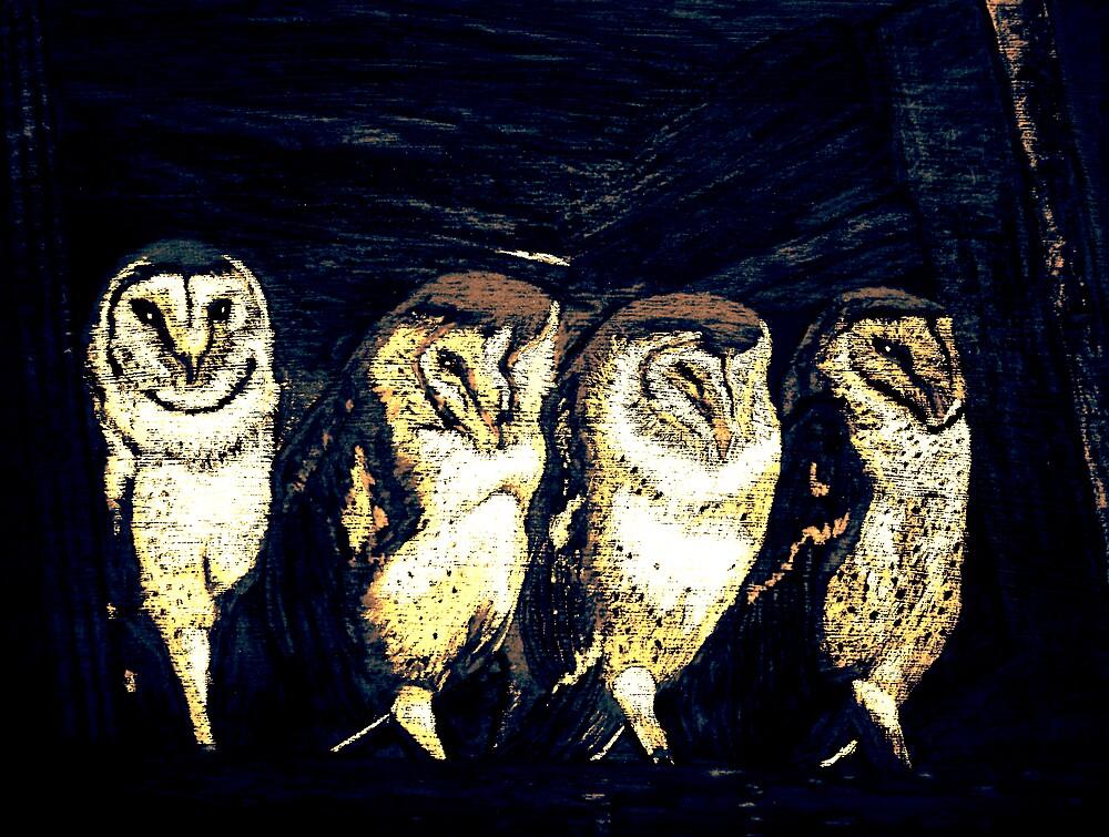 Resting owls by Carolyn