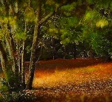 Path through the forest by Louise Cooke