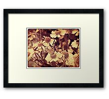 Grunge butterfly background 6 Framed Print