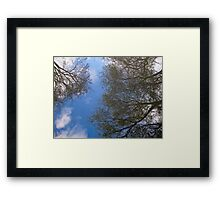 Reflections through water Framed Print