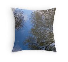 Reflections through water Throw Pillow
