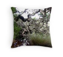 Goblin Swamp, near Pemberton, Western Australia Throw Pillow