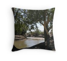 River Red Gums on The Darling River Upstream From Bourke. Throw Pillow
