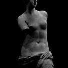Venus by Ashley Ng