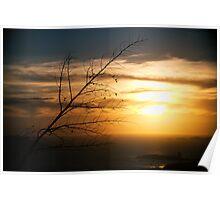 Noumea Sunset Poster