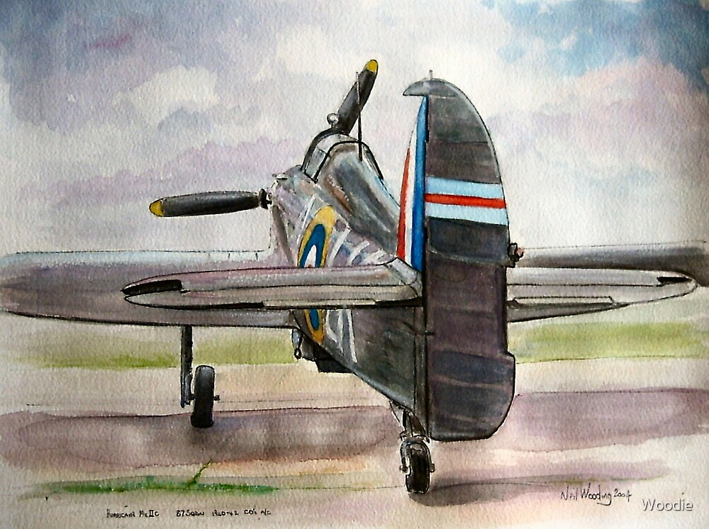 87 sqdn Hurricane mk2c by Woodie
