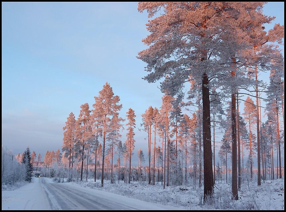 My way 01 by Alpo Syvänen