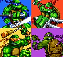Turtle Power by vgprints