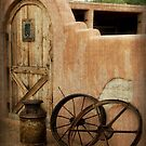 The Western Style by Lucinda Walter