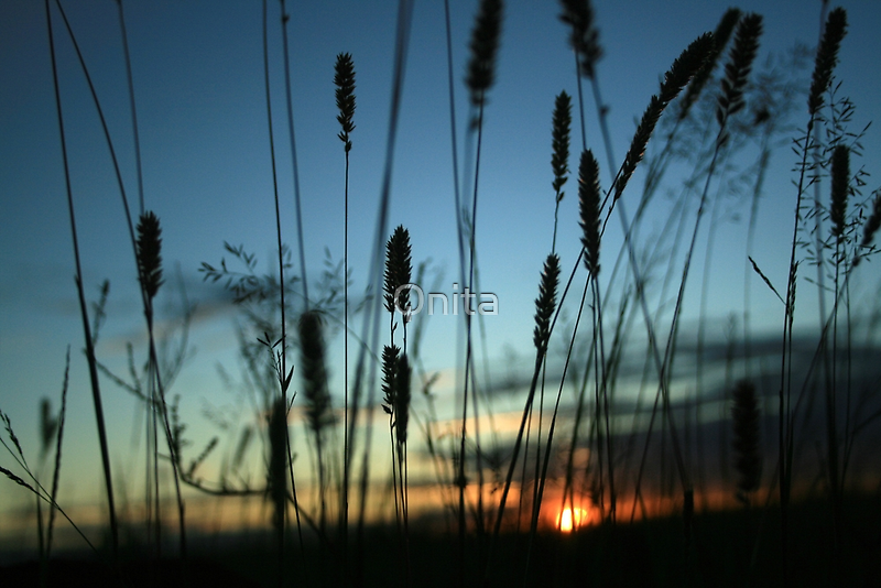 I'll see you in the morning... Free State Sunset, South Africa by Qnita