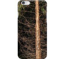 Darkness Within iPhone Case/Skin