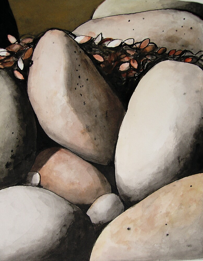 Rock Forms with Seaweed. by Bill Proctor