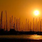 The Yacht Club by Rezit