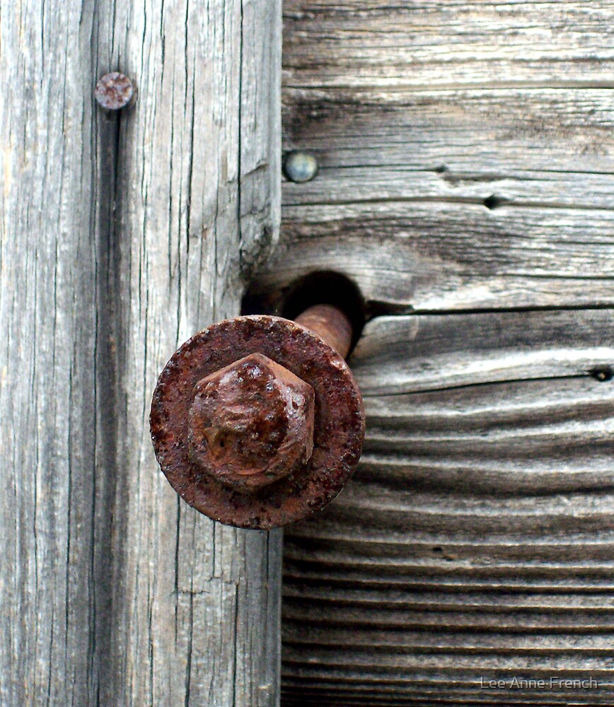 Rusty Bolt in Silver Wood by Lee Anne French