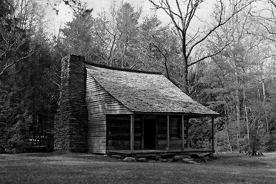Carter Shields Cabin by Gary L   Suddath