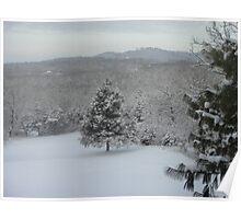 Winter in the Ozarks Poster