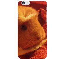 Brenda the Guinea Pig iPhone Case/Skin