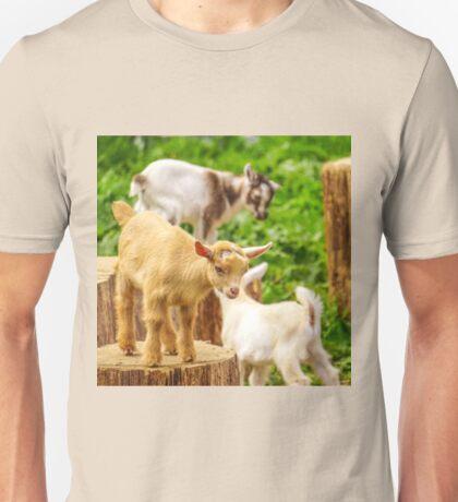 Baby Goats Playing Unisex T-Shirt