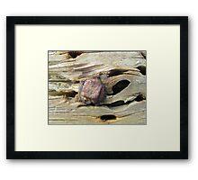 Aged breakwater Framed Print
