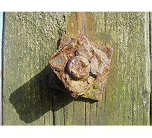 Rusty nuts Photographic Print