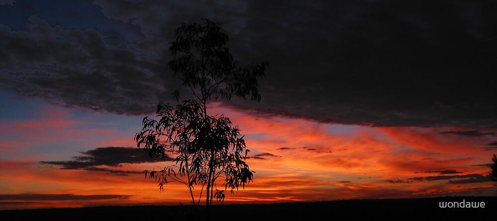 Australian New Year's Sunrise by wondawe