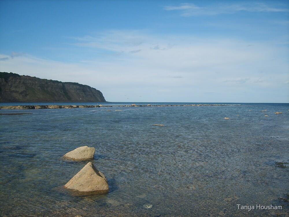 Still blue sea by Tanya Housham