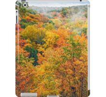 Autumn Overlook iPad Case/Skin