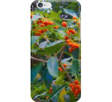 fascinating nature iPhone Case/Skin