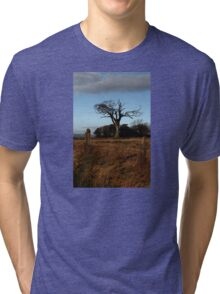 The Rihanna Tree, And Friends! Tri-blend T-Shirt