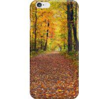 Walk in the Autumn Wood iPhone Case/Skin