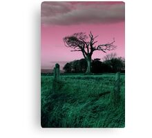 Rihanna Tree, Playing With Pink! Canvas Print