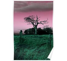 The Rihanna Tree, Playing With Pink! Poster