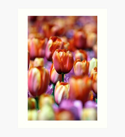 Standing Out In A Crowd Art Print